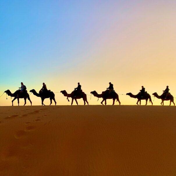 Ruta de 7 Dias desde Casablanca a Marrakech