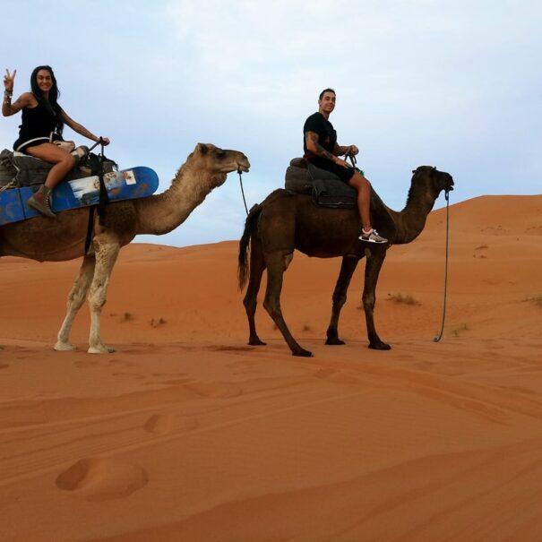 Excursión de 4 días de Casablanca a Marrakech vía Fez
