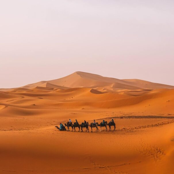 Featured image of our Marrakech to Fes desert tour 3 days